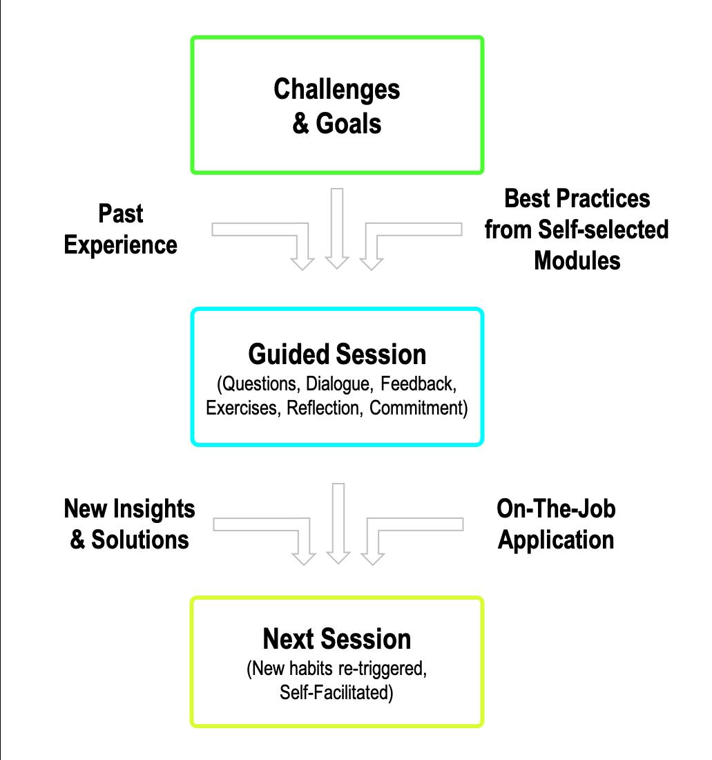How Peer Coaching Works